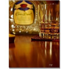 Trademark Fine Art Whiskey for the Soul Canvas Wall Art by Lois Bryan, Size: 18 x 24, Multicolor