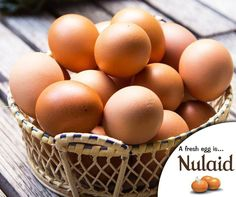 Eating eggs can make you healthier, brainier, leaner and stronger. Eggs have a high satiety index, meaning they make you feel full for longer. One large egg supplies 6g of high quality protein and a large variety of essential nutrients, with the exception of vitamin C. #Nulaid #Eggs #Nutrition Eating Eggs, Large Egg, Vitamin C, Protein, Nutrition, Make It Yourself, Healthy, Facts, How To Make