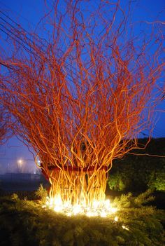 This might be nice outside? Put them in a container and light it from inside the container?   lighted-willow-branches.jpg