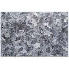 Trademark Fine Art Frost Mosaic Canvas Art by Kurt Shaffer, Size: 30 x 47, Multicolor