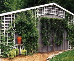 Trellis Wall Down Hill | Garden Trellis Design Ideas | Gardening ...
