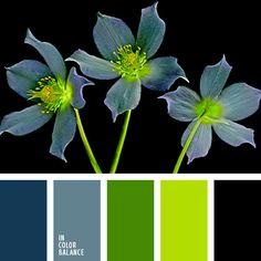 Esta paleta sobria y original al mismo tiempo consta de tres colores primarios: el azul apagado, el verde primavera y el negro.  Gracias al verde fuerte dicha gama de color se ve fresca e interesante.  Le dará un toque muy especial a tu oficina.