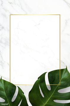 Rectangle golden frame on a marble background vector premium image by Adj HwangMangjoo marinemynt Flower Background Wallpaper, Tropical Background, Framed Wallpaper, Cute Wallpaper Backgrounds, Flower Backgrounds, Cute Wallpapers, Iphone Wallpaper, Greenery Background, Plant Background