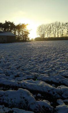 Wieś Marynino w zimie. / Marynino village in winter.   Marynino (Mazovia Voivodeship), Poland