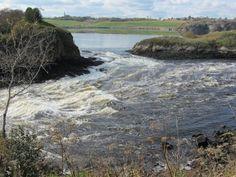 Reversing Falls, St. John, New Brunswick