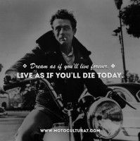 Discover and share James Dean Quotes. Explore our collection of motivational and famous quotes by authors you know and love. James Dean Quotes, Famous Quotes, Author, Photos, Famous Qoutes, Pictures, Writers