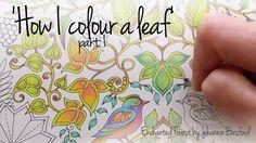 How I colour a leaf, part 1 (blending colours); Enchanted Forest - Johan...