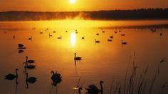 真夜中の太陽。フィンランドのラップランドで体験できる一番ユニークな自然現象。