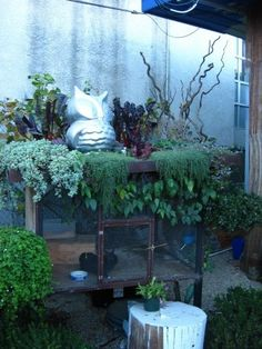 Image result for container garden rabbit hutch
