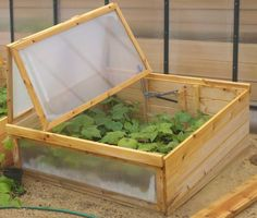 Cold Frame (Made in Maine)