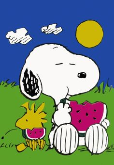 Woodstock and Snoopy - eating watermelon - summer Wow! My favorite time and memories-watermelon, homemade ice cream, grilling and practically living in our sunroom. Snoopy would love lounging with our toy poodle! Peanuts Cartoon, Peanuts Snoopy, Charlie Brown Y Snoopy, Tweety, Snoopy Und Woodstock, Snoopy Quotes, Joe Cool, Happy Fathers Day, Illustrations