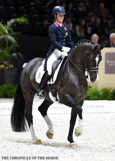 Charlotte Dujardin and Valegro. They just won another event in France, and broke a world record!!!