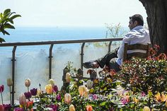 53-awesomefreephotos-istanbul-Bosphorus-view-landscape-tulips-750