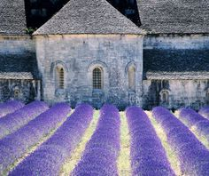 Provence, France- Roman bridges, fields of lavender and thyme, wine, cheese and chocolate tastings, local markets, cooking classes