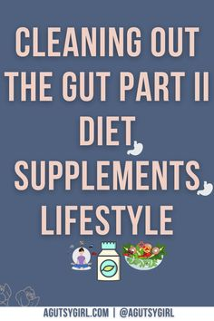 Cleaning Out the Gut Part II Diet, Supplements, Lifestyle agutsygirl.com #guthealth #supplements #ivf #ivfcycle
