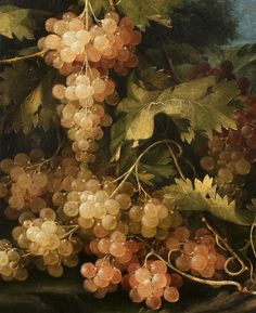 Francesco Malagoli. Detail from Vine Leaves, 1770.