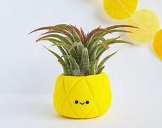 Pineapple Air Plant Holder Indoor Planter Best Friend gift Mom gift Pineapple Decor Gift for Her Desk Accessory Housewarming Face Planters, White Planters, Indoor Planters, Diy Planters, Planter Pots, Pineapple Planting, Succulent Planter Diy, Succulent Ideas, Calla Lilies