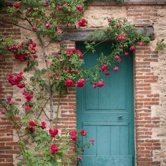 french country blue door, home decor, cottage with roses, romantic ...
