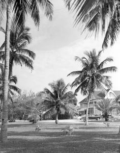 The Marco Island Club - Marco Island, Florida 1959