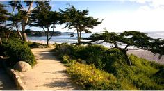 Monterrey Beach, California  We need to do a Monterey, Carmel, San Fran, Napa trip.