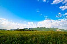 ★★★★ The Vista Pool Villa, Kanchanaburi, Thailand Resorts, Golf Courses, Thailand, Villa, Mountains, Nature, Travel, Naturaleza, Trips