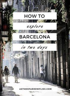 Barcelona City Guide | Two Days in Barcelona | Spain | Europe | Catalonia | Travel Tips #visitbarcelona #barcelonaguide #barcelona via @SamRSparrow