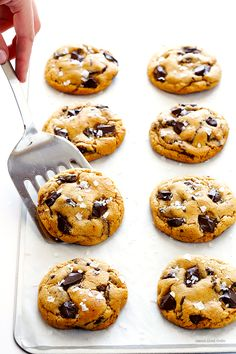 Salted Whole Wheat Chocolate Chip Cookies | Gimme Some Oven
