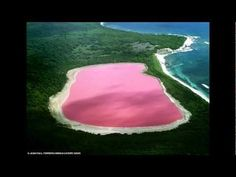 The Lake Hillier is one of the natural wonder of Australia. It can only be seen from the sky since it is prohibited to walk on Middle Island in Western Australia. The reason for this permanent pink color remains undetermined but the best scientific hypothesis seems to linked to Dunaliella Salina, a green microalgae, and to halobacteria in the water.