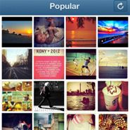 Instagram helps brands fuse social, mobile marketing  Brands such as Grey Goose and Taco Bell are turning to Instagram to drive consumer engagement and fuse their mobile and social media marketing efforts, experts say. The image-sharing site is easy for brands to get started with, and potentially allows them to make contact with customers while they're actually out on shopping trips.