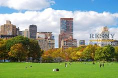 Central Park Manhattan is the setting for many enjoyable pursuits. Check out more real estate news at https://www.facebook.com/RESNYRealEstateSchoolofNY