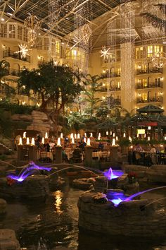 This year I asked my husband if we could stay at Opryland Hotel for our 10th anniversary. It is absolutely BEAUTIFUL during Christmas!! I hope he picked up on my hints! ;)