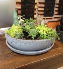 POPconcrete RAW Planter!