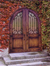 entry doors-Wholesale Entry Doors-mahogany doors-beveled glass ...