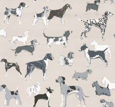 Hot Dogs Silver wallpaper by Jane Churchill