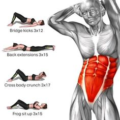 Core Exercises For Beginners, Gym Workout For Beginners, Gym Workout Tips, Workout Challenge, At Home Workouts, Good Mornings Exercise, Yoga Poses For Back, Lower Belly Workout, Crescendo