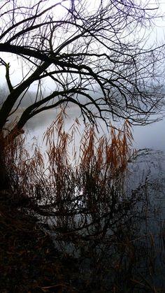 Regensurg - Baggersee