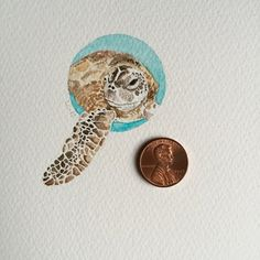 Pacific Green Sea Turtle, 2015. Watercolor and pencil Liz Carlson Arts and Illustration Liz Makes Minis