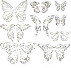 Butterfly Drawing, Butterfly Nail, Butterfly Wings, Butterfly Tattoos, Butterfly Outline, Butterfly Wing Pattern, Tattoo Bird, Fairy Wing Tattoos, Butterfly Template