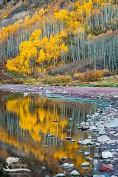 Golden aspens, Maroon Bells, Colorado; Landscape photography by Kevin Reaves.