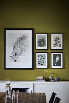 Les illustrations végétales de Pernille Folcarelli - FrenchyFancy
