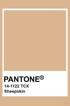 Neutral Color Scheme, Colour Pallete, Colour Schemes, Color Trends, Pantone Swatches, Color Swatches, Pantone Colour Palettes, Pantone Color, Gifs Ideas