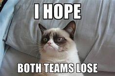 Grump Cat Super Bowl
