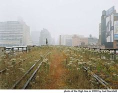 Original High Line Abandoned Railroad Track Before Renovation, photo by Joel Sternfeld, high line, green park in the sky