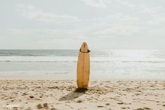 Surfboard mockup on the beach | free image by rawpixel.com / McKinsey Beach Images, Beach Pictures, Print Pictures, Surf Brands, Camera World, Printable Pictures, Office Wall Art, Office Decor, Free Beach