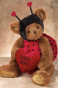 Love Bug Bear Cute idea for costume.