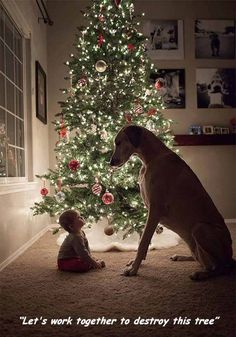 40 Most Enjoyable Images You'll See This Week - Wow Gallery