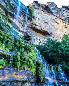 What an adventure. The blue mountains never cease to amaze me  #katoombafalls #sydney #bluemountains #katoomba  #ig_australia #exploreaustralia #amazing_australia #wow_australia #australia_shotz #igs_oceania #theworldshotz #australiagram #australia #seeaustralia #weareexplorers #greatshotz #focusaustralia #ozshotmag #nature  #adventure #explore #beautifuldestinations #earthpix #ourplanetdaily #awesomeearth #tourtheplanet #discoverearth #wonderful_places #awesomeglobe #exploringaustralia by…