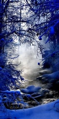 Beautiful Winter Scenes photos) - My Modern Metropolis Foto Nature, All Nature, Beautiful World, Beautiful Places, Simply Beautiful, Absolutely Gorgeous, Winter Szenen, Winter Blue, Beautiful Winter Scenes