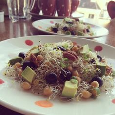 Alfalfa salad with chickpies, avocado & olives