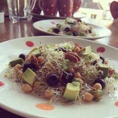 Alfalfa salad with chickpies, avocado & olives